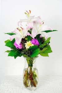 Cel-flowers-1535801_1280-200x300